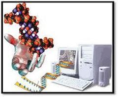 Biocom2.jpg